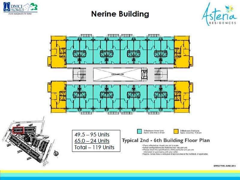 Nerine-Layout